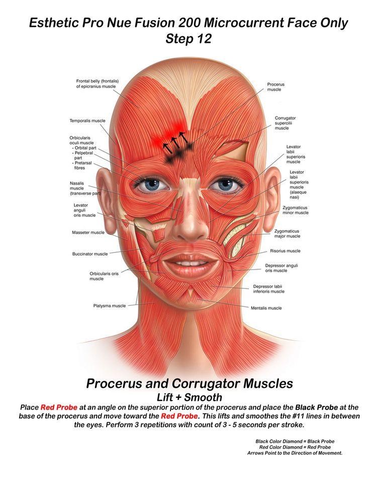 14 besten Microcurrent Facial/Body Sculpting Bilder auf Pinterest