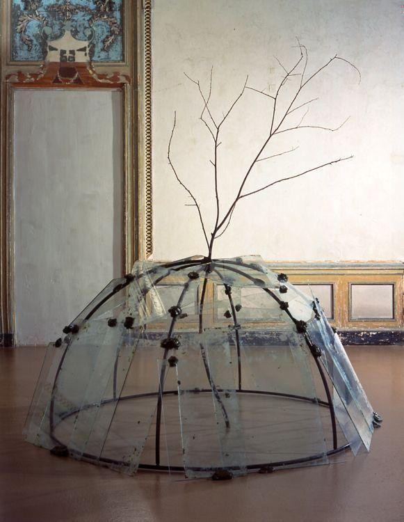 Merz, Mario Iglú con árbol Arte povera2 conceptual(1968)