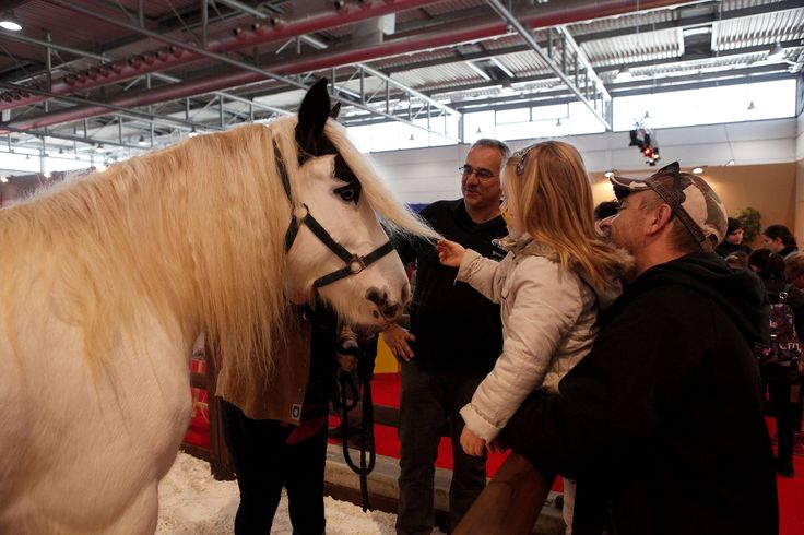 #fieracavalli #fieracavalli2015 #horses #passion Photo Credits: Ennevi Foto - Veronafiere