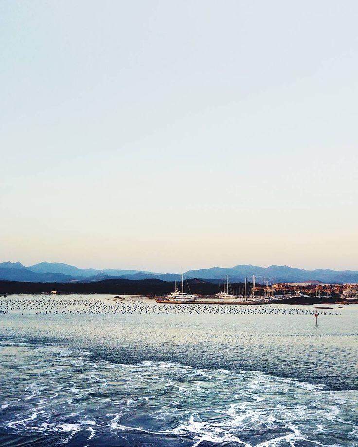 Sunrises are rare in my life and maybe for this reason more beautiful to see... . . . #sardegna #sardinia #olbia #bestofvsco #sea #beach #seetoshare #summer #sunrise #photogram  #flashofthelight #visualauthority #doyouskrwt #finditliveit #vscophile #livelevel #thecreatorclass #visualofearth #heatercentral #darlingescapes #guardiantravelsnaps #cbview #livelevel #at_diff #iamatraveler #timeoutsociety #bestdiscovery #love #travellingtroughtheworld #discover_vacations