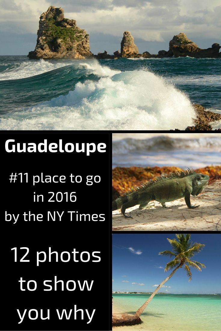 The Guadeloupe islands in the Caribbean have been ranked 11 on the 52 places to go in 2016 list by the New York Times. Here are 12 photos to show you why. http://www.zigzagonearth.com/best-photos-guadeloupe-islands/
