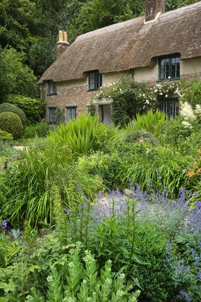 ~Hardy's Cottage, Dorchester, Dorset, UK, dating from 1800, where Thomas Hardy was born in 1840~