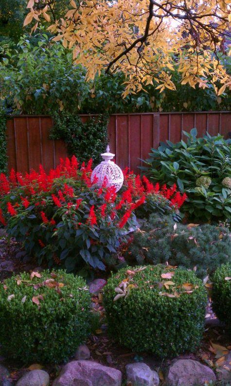 Live Flower Garden : Best images about michigan flower garden on pinterest