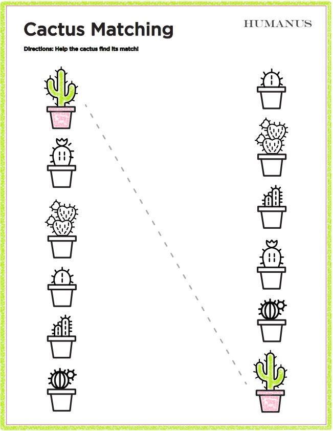 Cactus Matching A Free And Fun Matching Worksheet For Kids