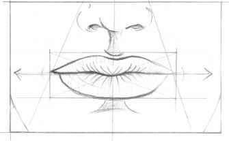 Face Anatomical Drawings