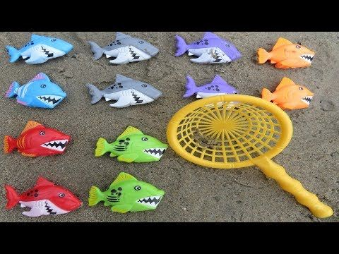 Shark Names Sea Animals Learn Colors for Children Toys Fun Educational Video for Toddlers Kids - YouTube