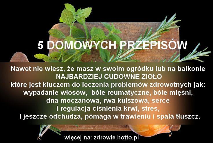 ZIOŁO z polskiego ogrodu LECZY RÓŻNE BÓLE, DNĘ, SERCE, WYPADANIE WŁOSÓW, ODCHUDZA i…