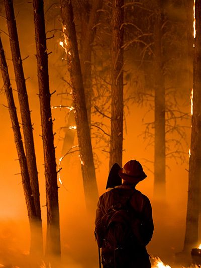 Boise, Idaho: A firefighter at a forest blaze. Photograph: Reuters
