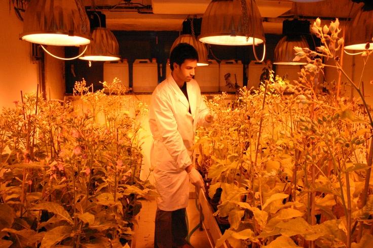 Dipartimento di Scienze Agrarie