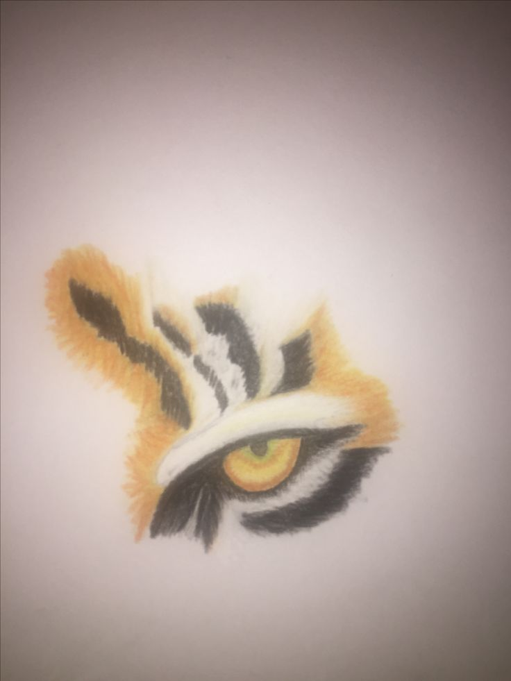 The complete eye of the tiger (soft pastels were used)