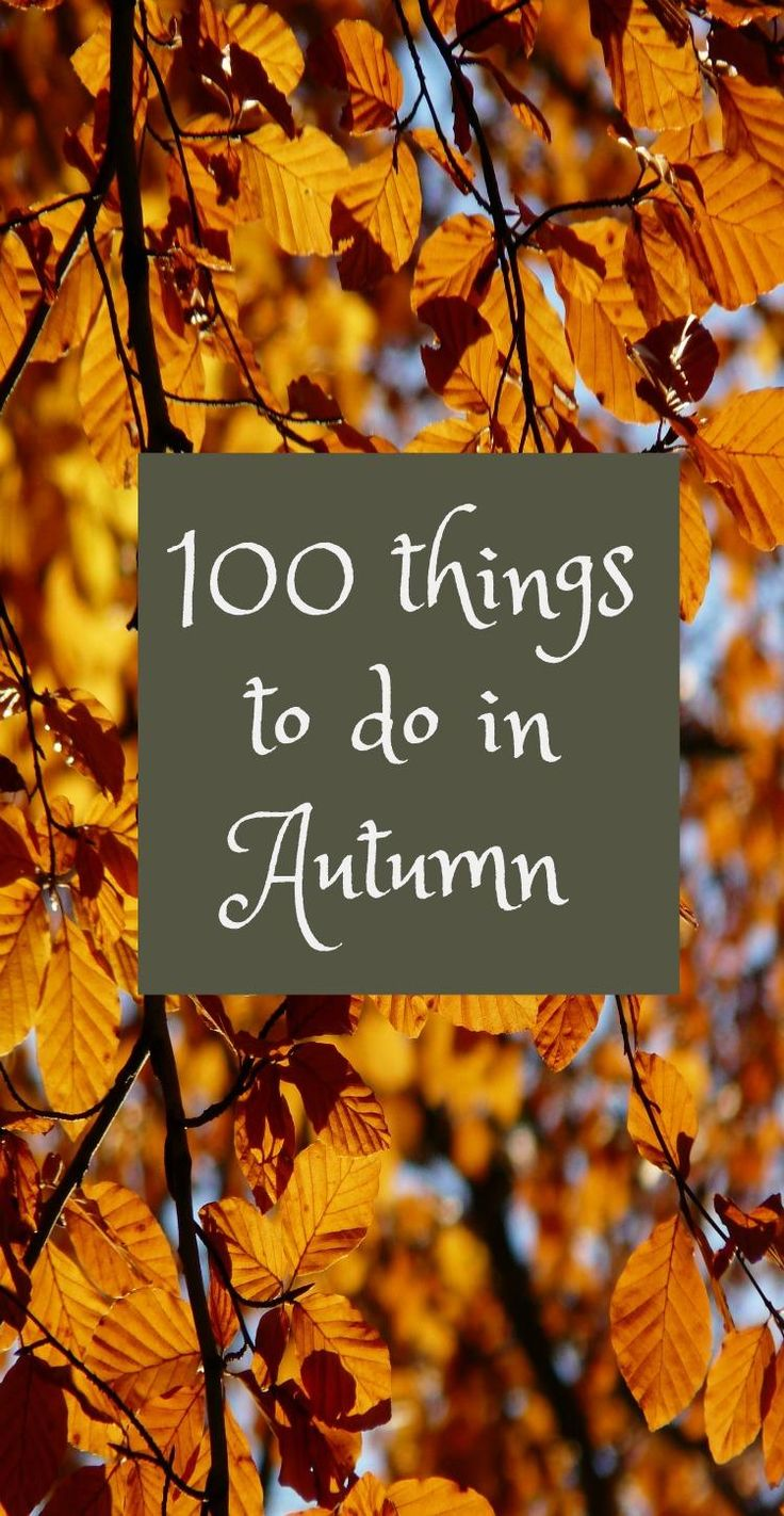 100 family things to do in Autumn - fun activities for fall, 100 fall activities