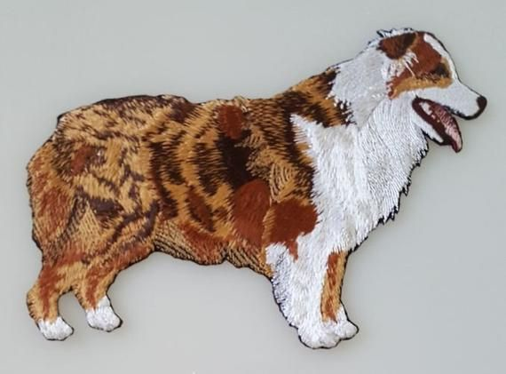 Australian Shepherd Aussie Red Merle Dog Embroidered Patches Hats Free Usa Shipping Dog Coat Pattern Australian Shepherd Dog Coats