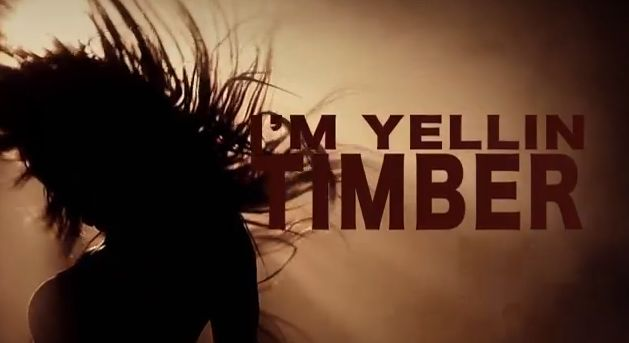 """Watch the official lyric video for Pitbull's """"Timber"""" featuring Kesha now!  http://www.youtube.com/watch?v=EQzXwcZS-FU  Buy the song on iTunes here: iTunes.com/Pitbull"""