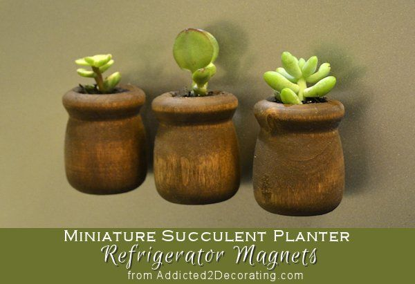 Make miniature succulent planter refrigerator magnets with unfinished wood candle cups