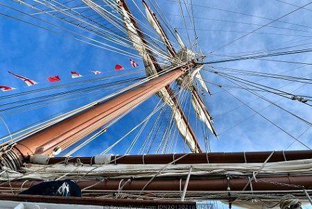 La arboladura es una parte imprescindible de las embarcaciones de vela. ¿Qué es la arboladura de un barco? Es el conjunto de árboles y vergas de un barco. Aquí el término árbol es sinónimo de palo o mástil. A continuación se citan, por orden alfabético y con sus correspondientes significados, todas las palabras en español relacionadas con la arboladura de una embarcación.  Antena 'mástil o torre metálica que remata la entena de los barcos, y que sirve de antena', 'entena (vara a...