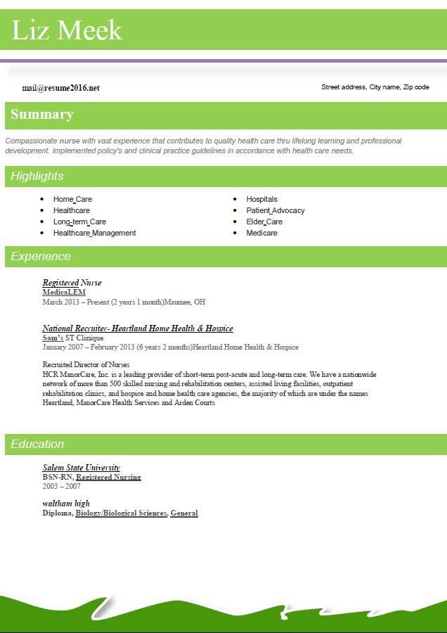 25  best ideas about best resume format on pinterest