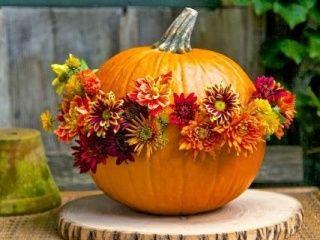 Keď príde jeseň: Záhrada v peknom šate