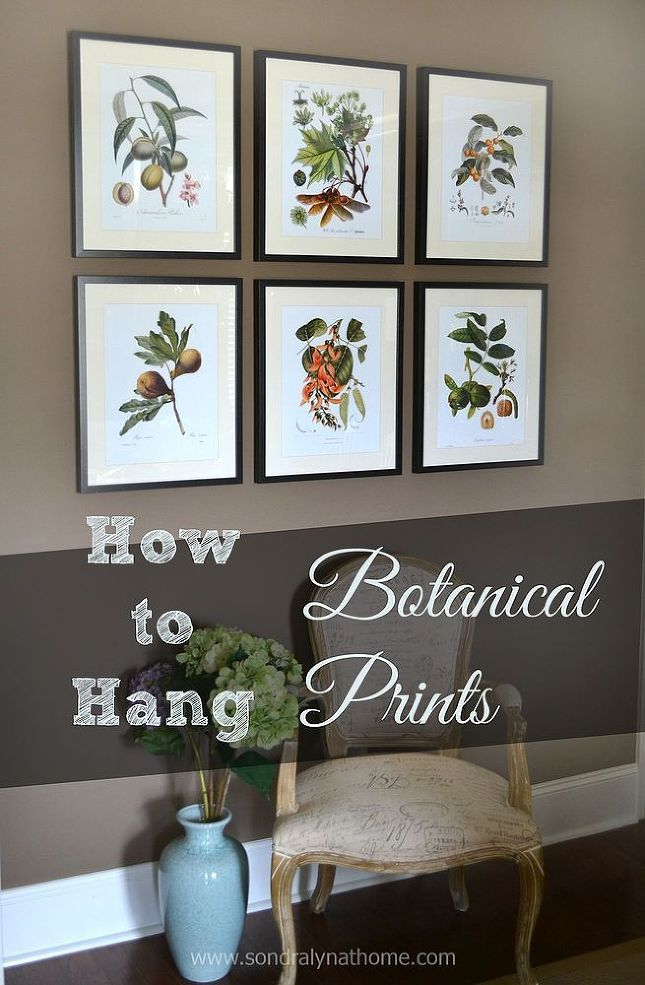Botanical Prints: Traditional or Timeless?