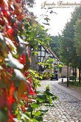 Meine Bilder und Fotografien - Stadt Neubrandenburg