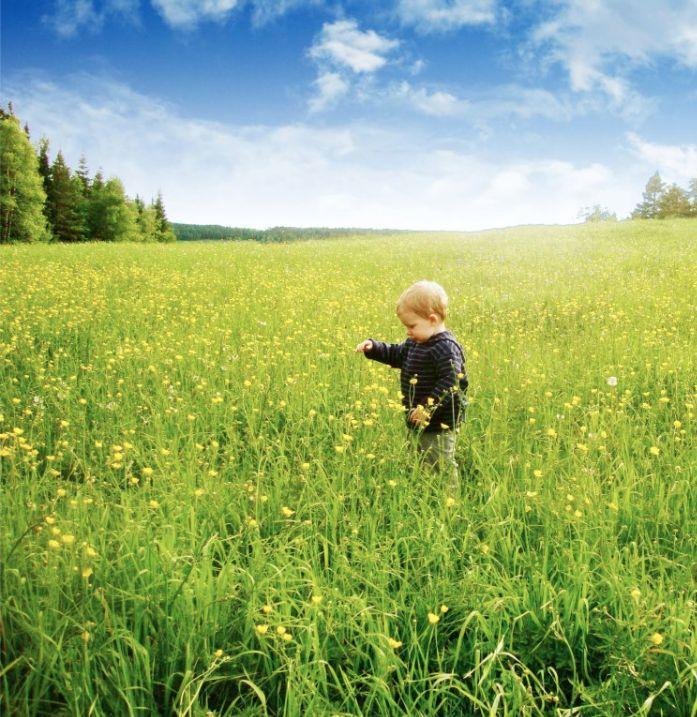 50 activités à faire avec votre bambin mamanszen.com