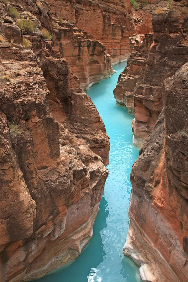 ✯ Mouth Of Havasu Creek - AZ