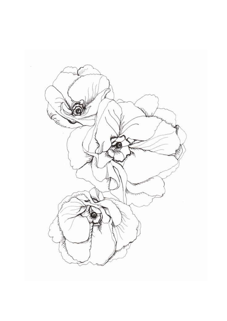 Line Drawing Tattoos London : Trending line drawing tattoos ideas on pinterest