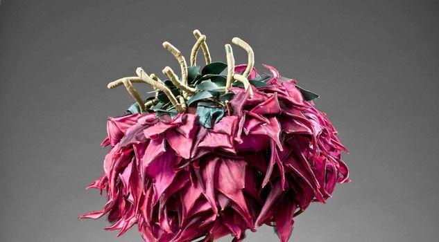 Chapeu, Madame! a Torino un'esposizione di cappelli dal 1920 al 1970. Palazzo Madama, 80 cappellini raccontano l'arte delle modisterie torin...