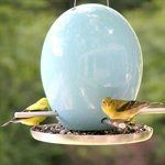 Modern Bird Feeders for Spring — Product Roundup | Apartment Therapy