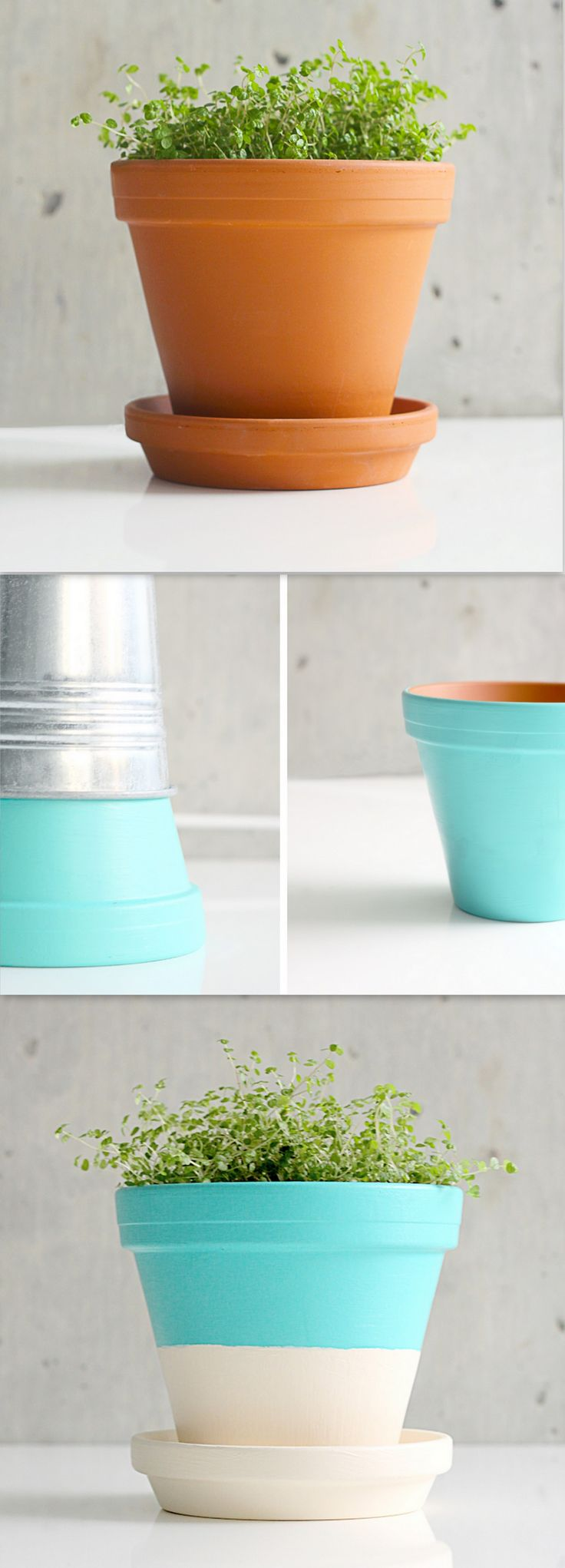 Painted Terracotta Pots + Easy DIY Project