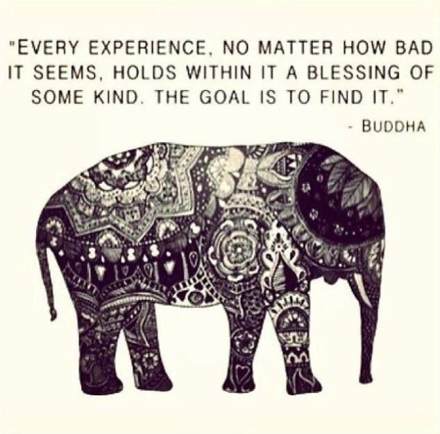 buddha quotes on beauty quotesgram