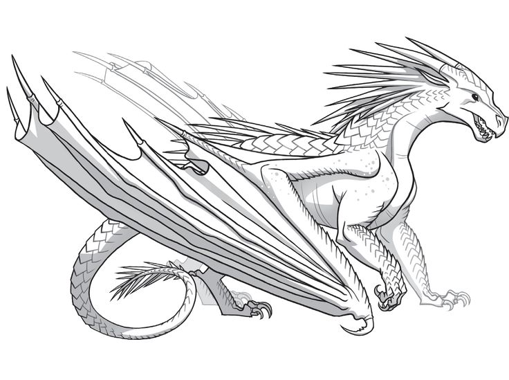 icewing  wings of fire dragons wings of fire dragon