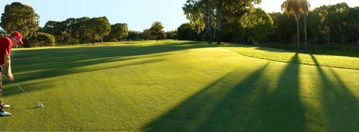 golf__2a.jpg 730×270 pixels
