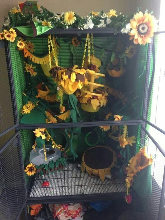 Beautiful sunflower cage setup. This is too cute. It needs some more ledges and platforms for chinchillas but it's a great theme.