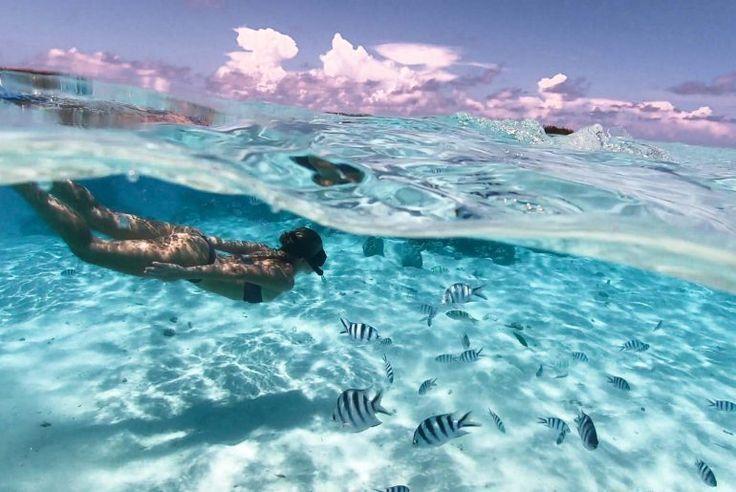 Cookinseln Reiseführer Aitutaki & Rarotonga – Reisen – #Aitutaki #amp #Cook ……   – travleing