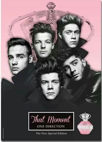 One Direction That Moment
