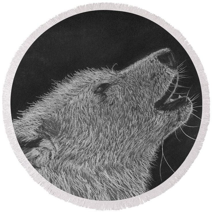 """The Howl Round Beach Towel by Tracey Everington.  The beach towel is 60"""" in…"""