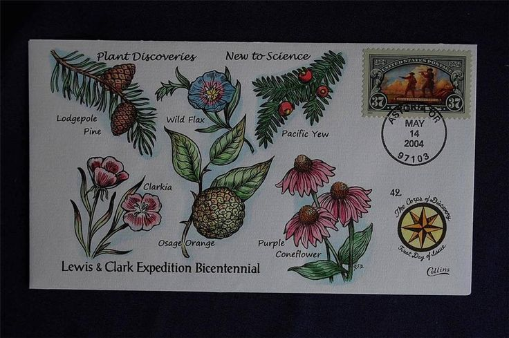 Lewis & Clark 37c Stamp FDC Handpainted Collins#N3842 Sc#3854 Plant Discoveries