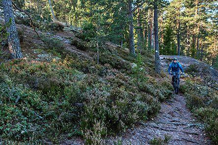 Maastopyöräily on sallittu jokamiehenoikeudella. Kuva: Jari Kostet