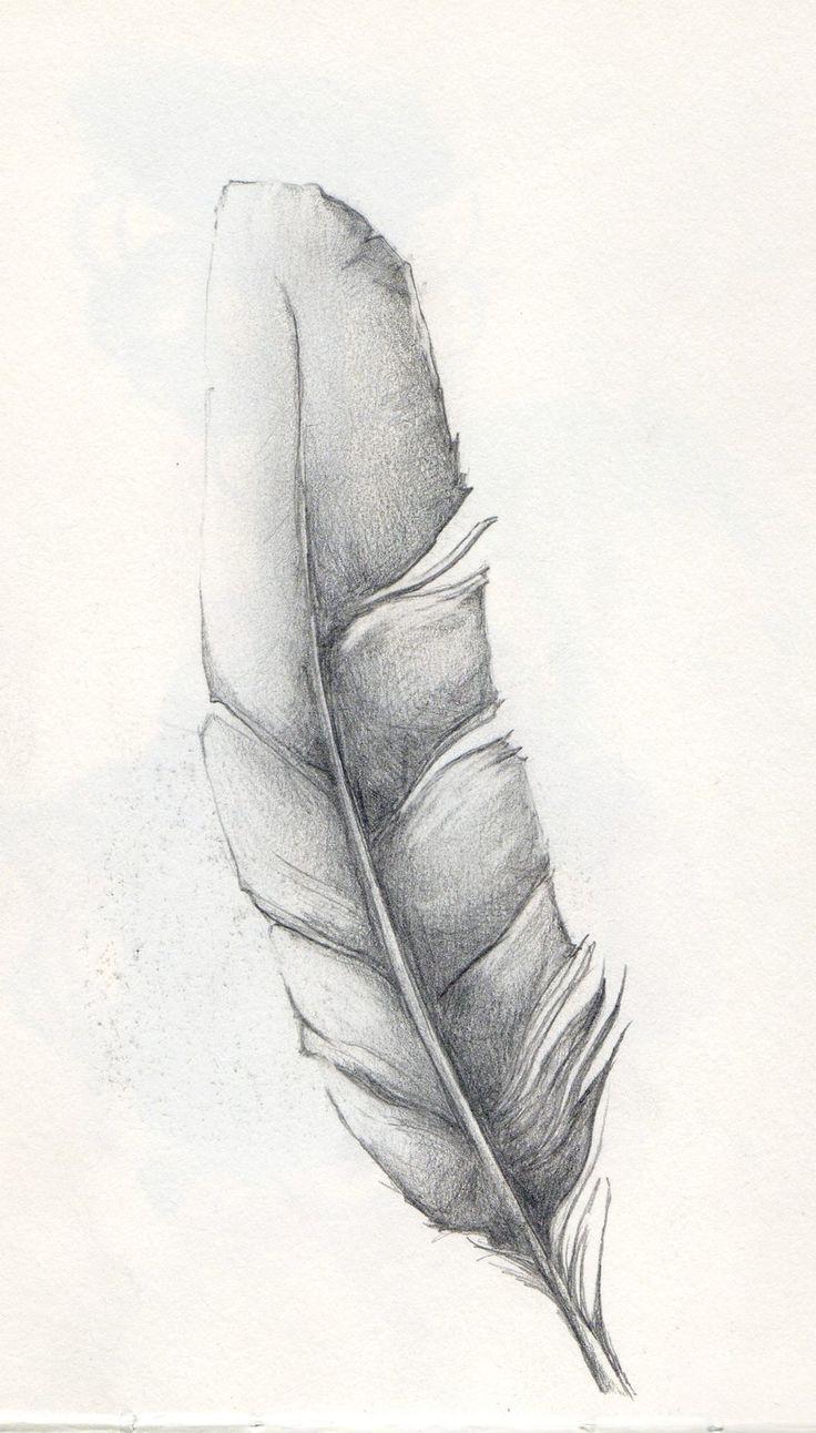 Feather Sketch by JANunnoArt on DeviantArt