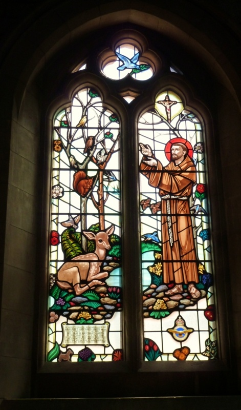Saint Francis of Assisi (known as the patron saint of animals, birds, and the environment) depicted in this stained glass window inside St Peter's Church, Budleigh Salterton, Devon, England. Photo by Jan Marshall. BA Hons.