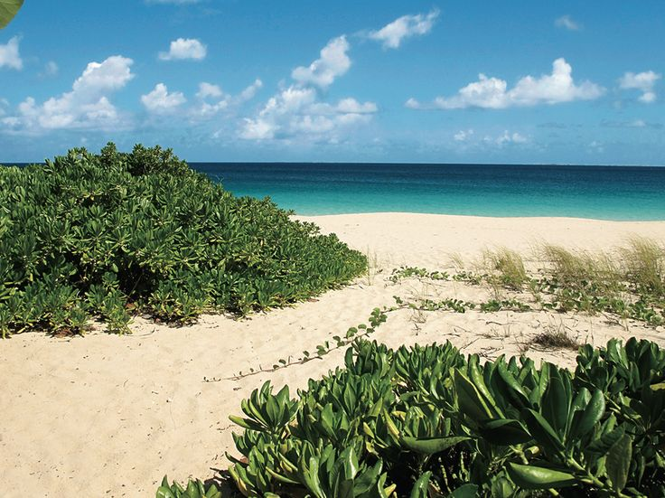 The vibe is barefoot chic in Meads Bay, Anguilla. Find out the best restaurants and hotels to hit in 2014.