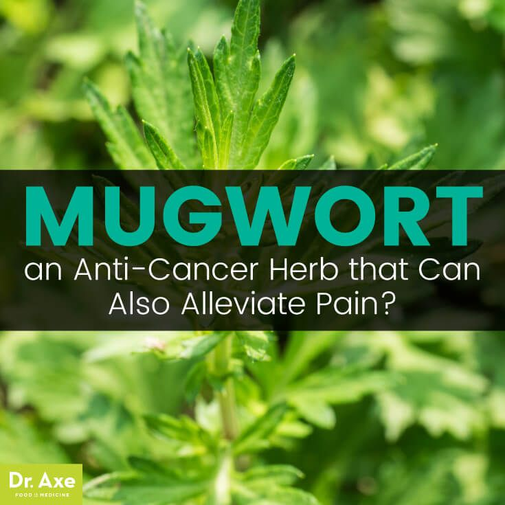 Mugwort: the Herb that Fights Joint Pain, Depression & Cancer? - Dr. Axe