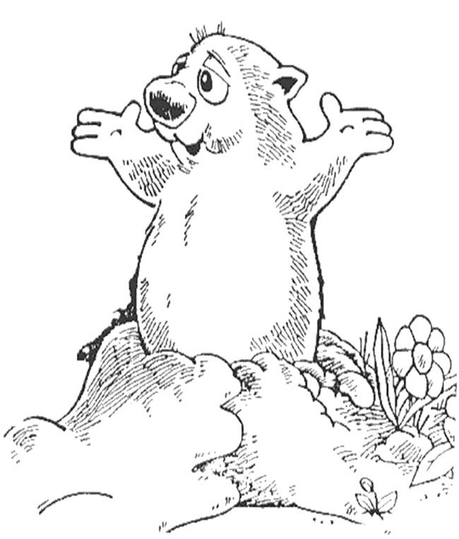 Happy Groundhog Day Coloring Page Groundhog Day Coloring