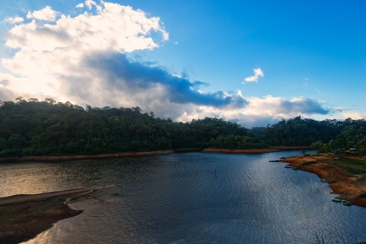 https://flic.kr/p/p423DG | Thekkady, Kerala, India