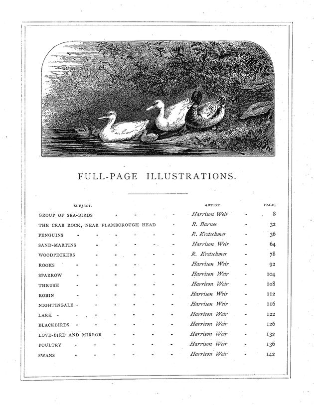 Our feathered companions, or, Conversations of a father with his children about sea-birds, song-birds, and other feathered tribes that live in or visit the British Isles, their habits, &c. - Page viii