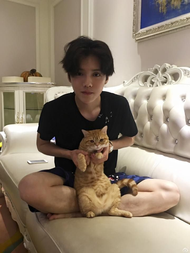 his cat is so cute <<< yeah, just the cat.... XD LUHAN  EXO