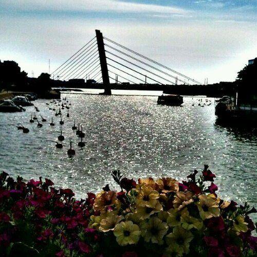 Crusellin Silta, Bridge and Ruoholahti Canal