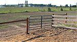 Livestock Fences : Hillcrest Fencing