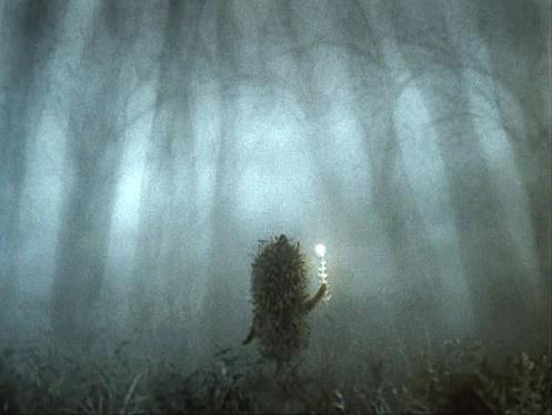 Hedgehog in the Fog :)