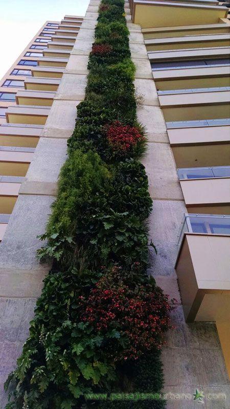 16 best ecosistema vertical en colombia medell n
